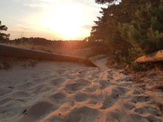 Die Düne in der Abendsonne