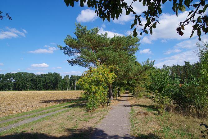 Beginn der Wanderung in der Lüneburger Heide