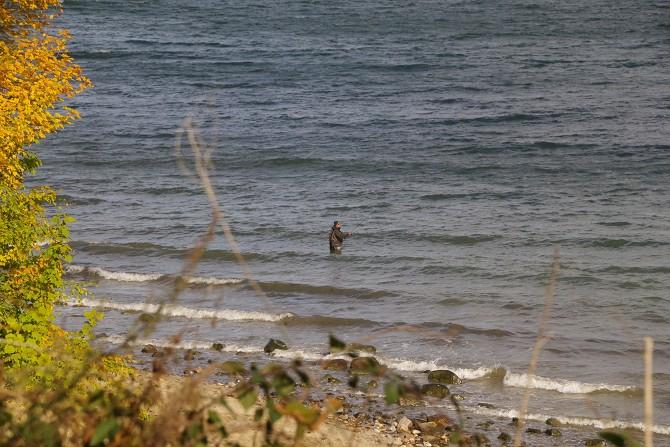 Bild: Angeln in der Ostsee