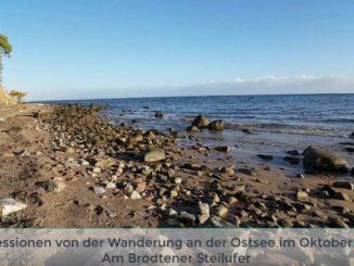 Bild: Brodtener Steilufer an der Ostsee