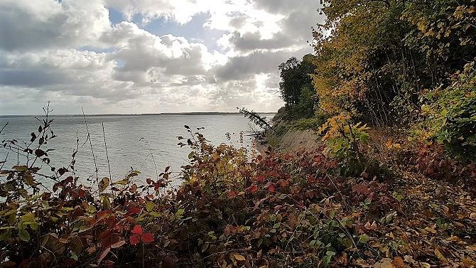 Bild: Brodtener Steilufer im Herbst