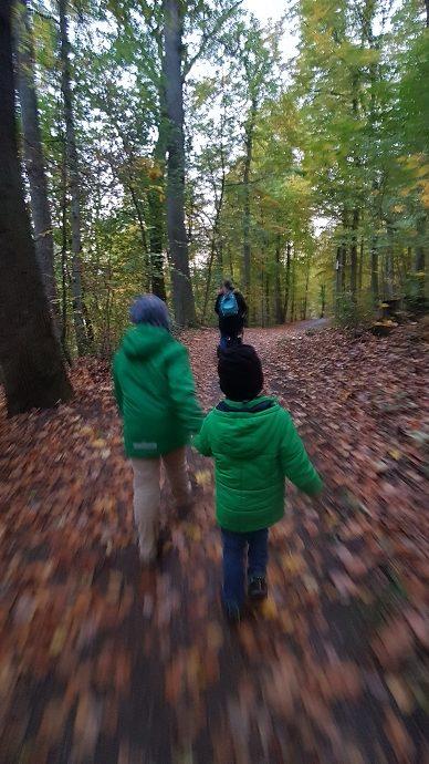 Auf dem Rückweg ging es schnell durch den Wald